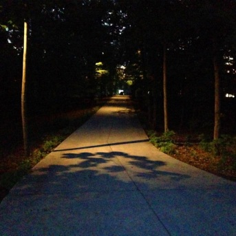 Louisville%20creative%20driveway%20and%20path%20lighting[1].jpg