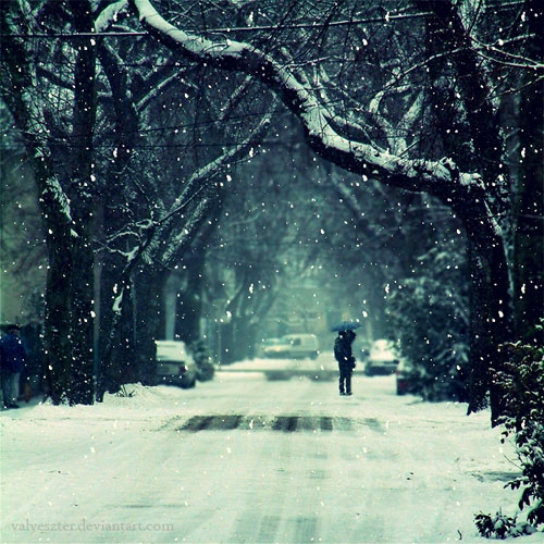 wintermemorie-6592[1].jpg